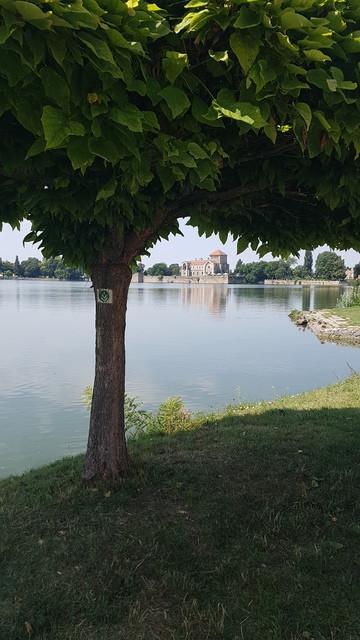 Tatai vár, Öreg-tó, Tata