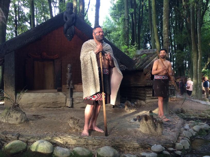 maori harcos; új-zéland