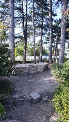 margitsziget;japánkert;könyv;egyedüllét