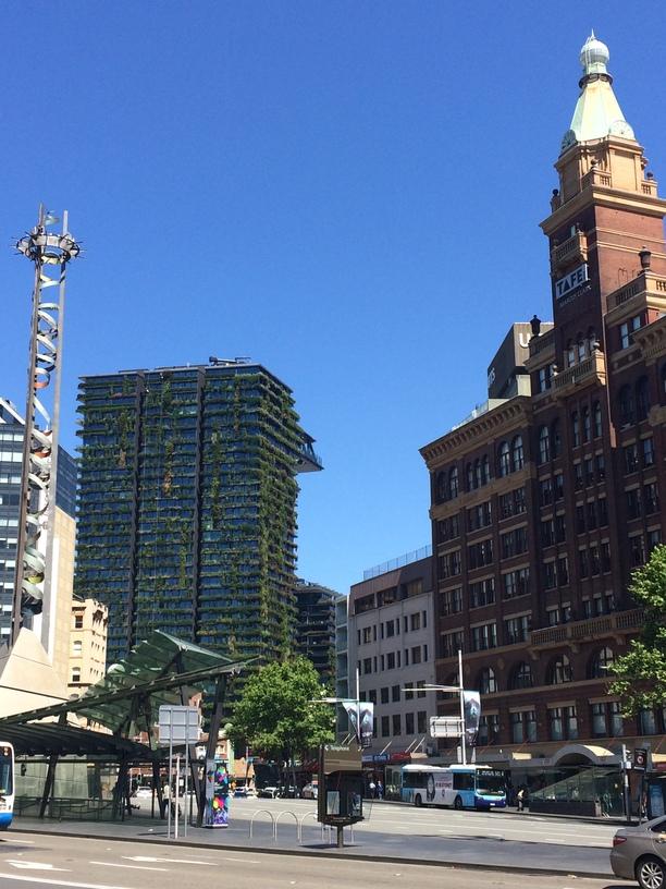 """""""Növényház"""" Sydney-ben, környezettudatosság"""