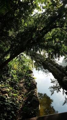 margitsziget;japánkert;patak