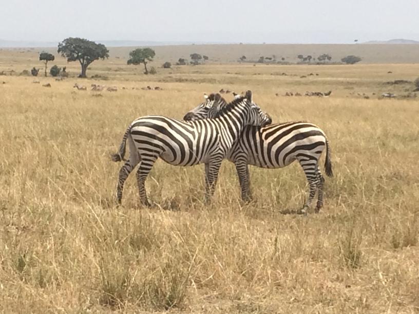 Afrika - Zanzibár és Kenya