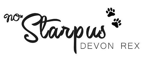 Logo Starpus-5.jpg