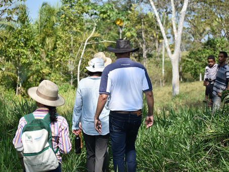 Local Perspective: Kassia Freire, a Reforesting Farmer