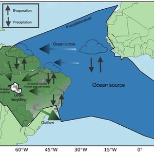 Research Memo: Amazon rainforests mitigate drought in Rondônia