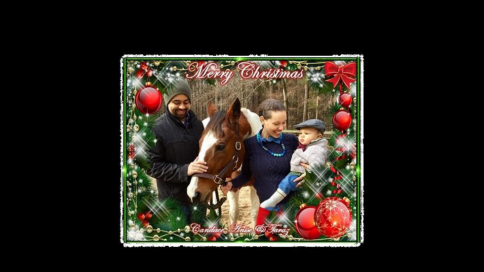 Winter Pine Photo Christmas Card