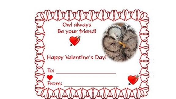Valentine Owl Word Search