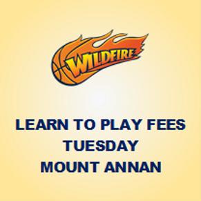 Learn to Play - Tuesdays @ Mt Annan