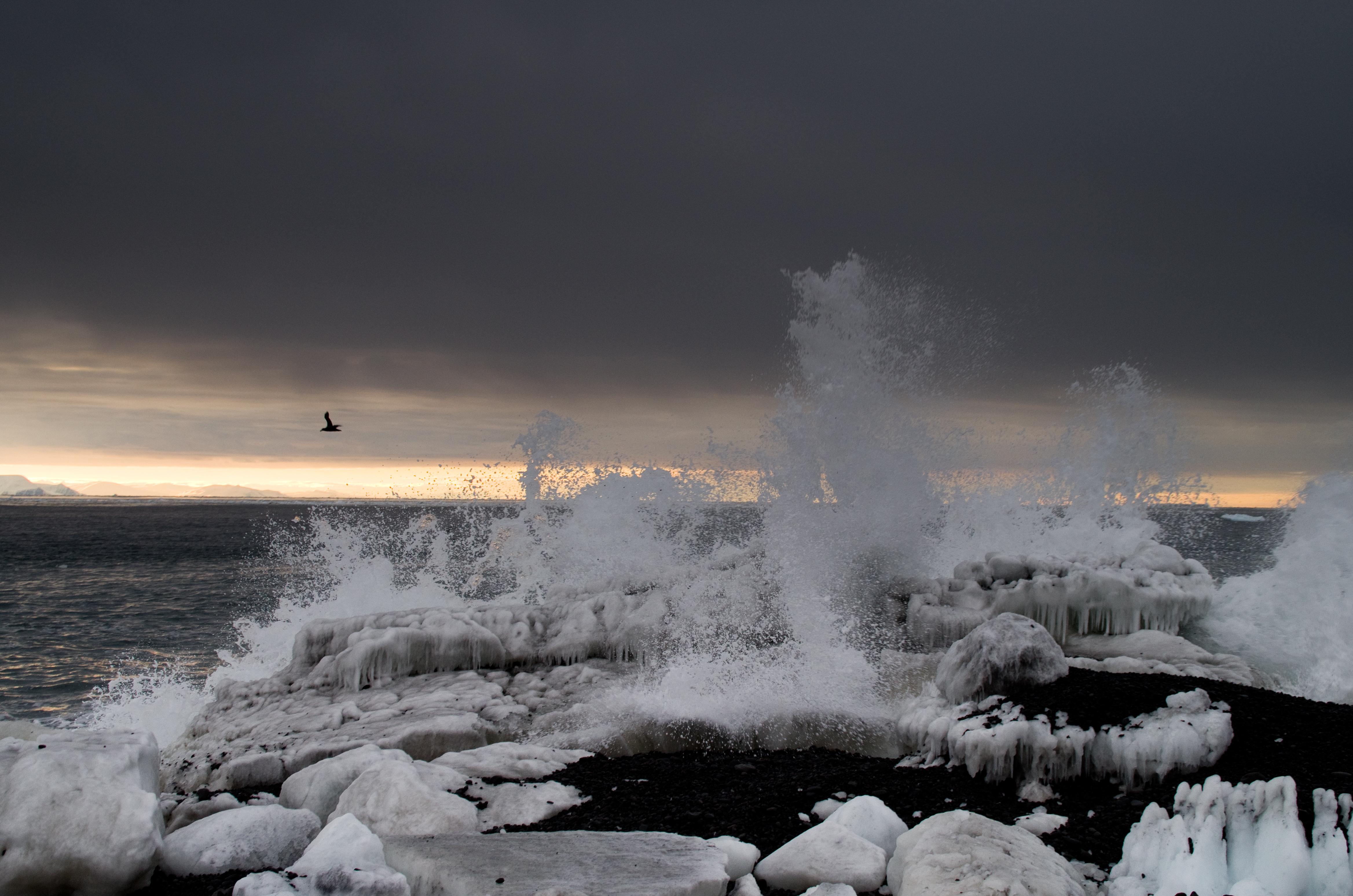 Cape Adare Antarctica