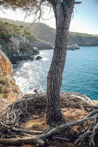 Mallorca-ASI-Reisen0117.JPG