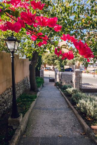Mallorca-ASI-Reisen0501.JPG