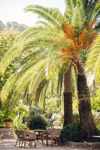 Mallorca-ASI-Reisen0413.JPG