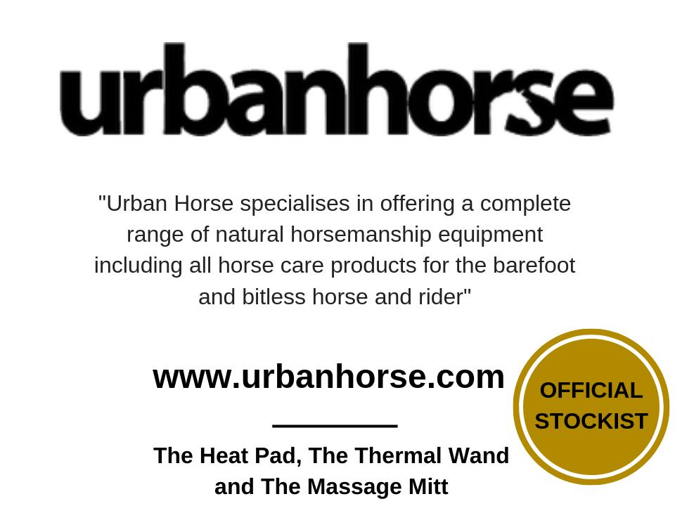 urban-horse-2