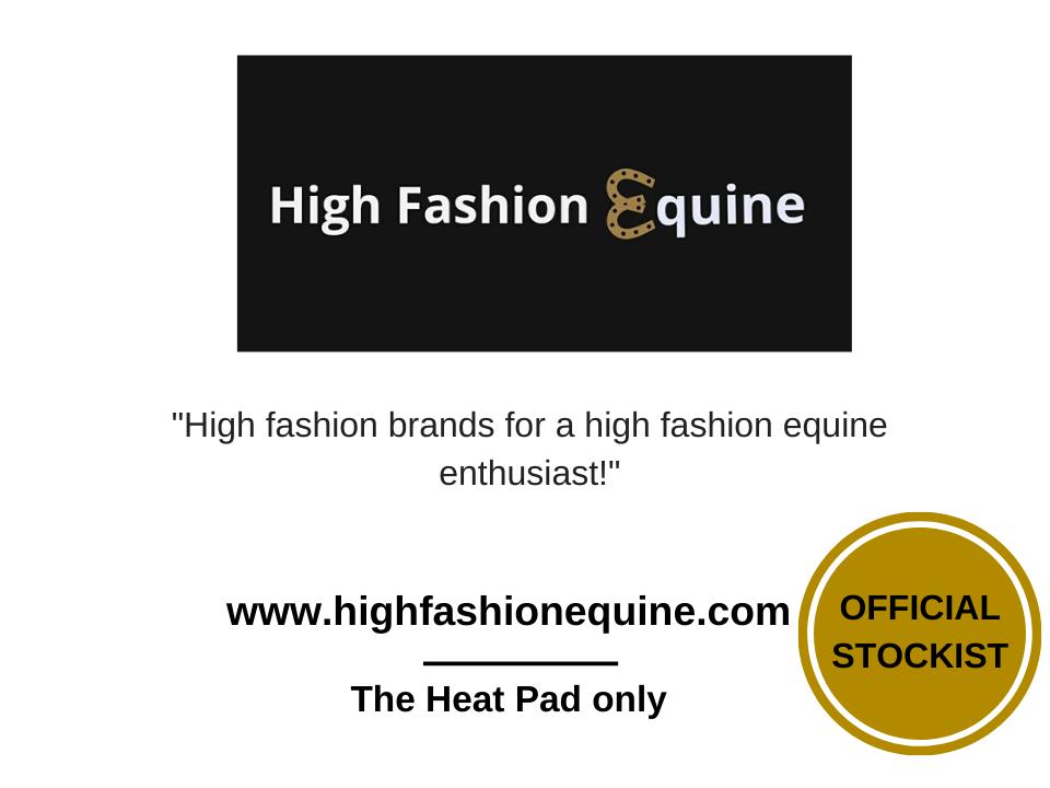 high-fashion-equine