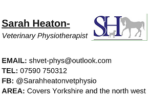 sarah-heaton-veterinary-physiotherapist2