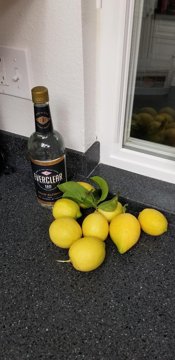 When life gives you lemons…make limoncello.
