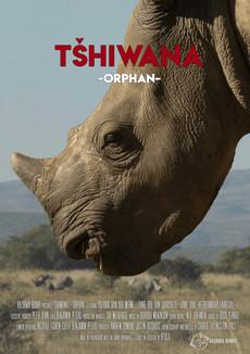 Tshiwana - Orphan