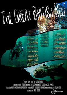The Great British Reef