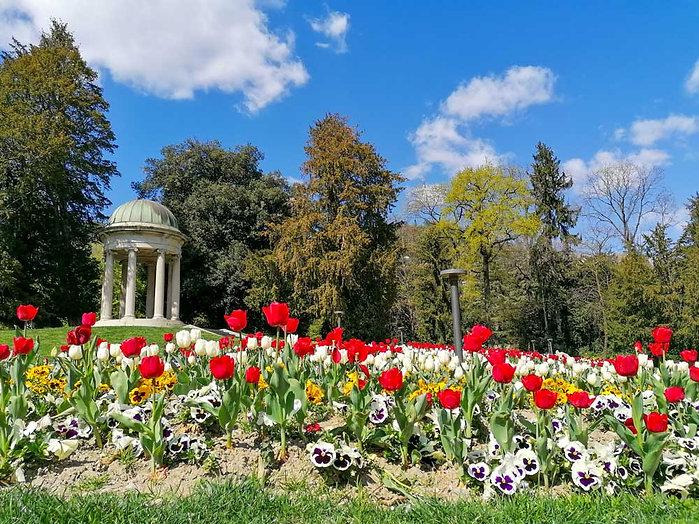 villa-olmo-in-fiore.jpg