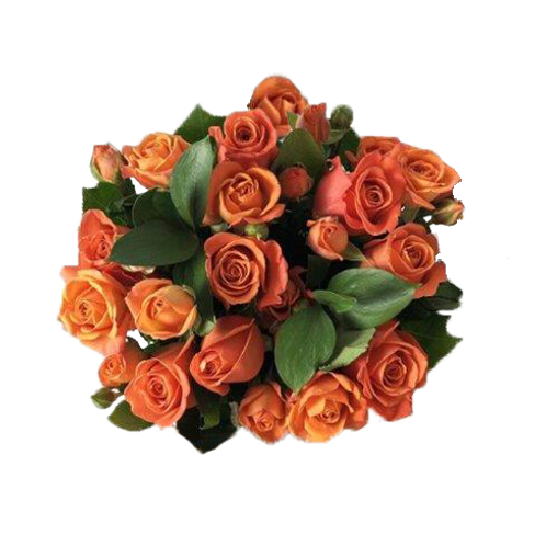 DL Passion Rose Bouquet Mix