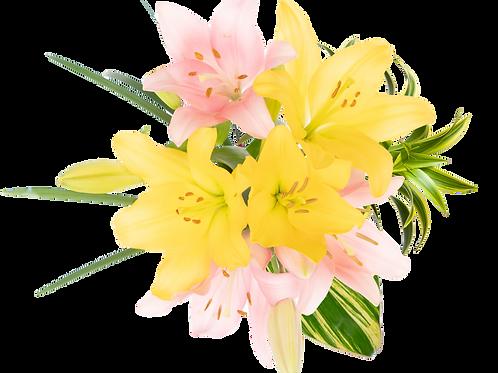 Teacher's Day LA Enhanced Bouquet