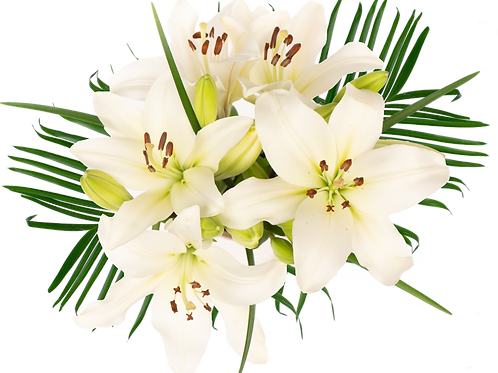 Palm Sundy LA Enhanced Bouquet
