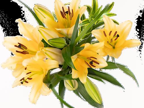 Admin Day Oriental Enhanced Bouquet