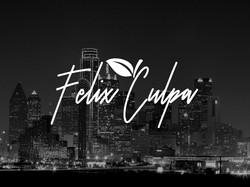 SBBC Site Icons Felix