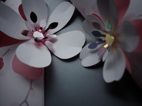 TOKYU SHIBUYA SAKURA Display