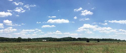 HA51053 - Gettysburg, Trostle Farm Scenic Backdrop