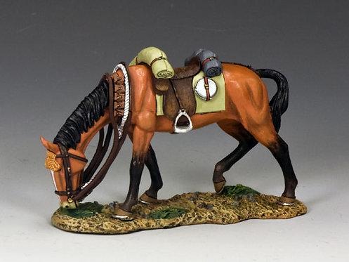 AL045 - Standing Horse #1