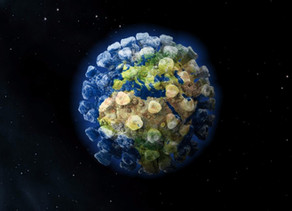 ¿Cuales son los virus mortales que desaparecieron y qué lecciones nos dejan para combatir Covid 19?