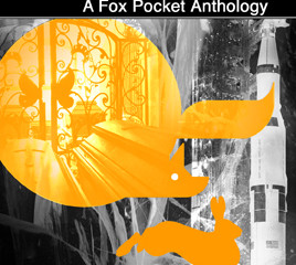Covers (& contents) of  Fox Pockets series uncovered...