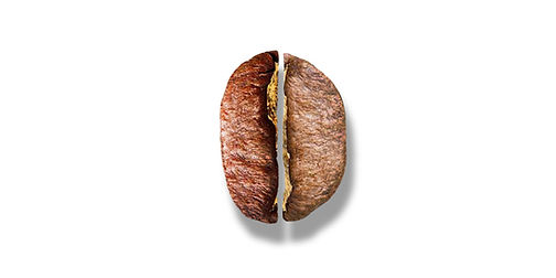 CAFE_robusta-arabica.jpg