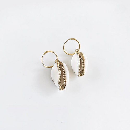 cowrie shell - 14K gold filled hoops