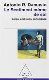 psychotherapie-pleine-conscience.jpg