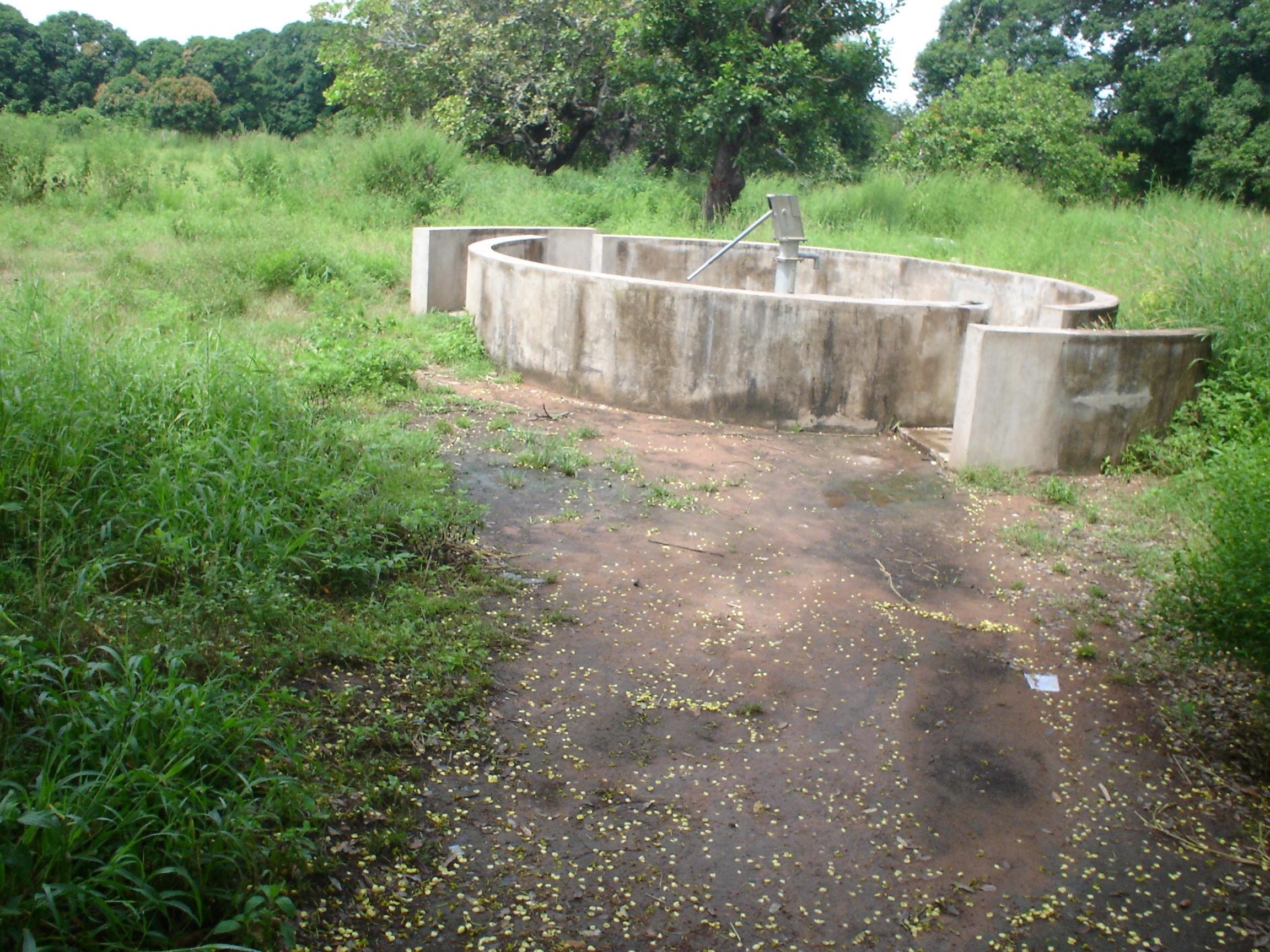 Forage Pastoral de Doukourela