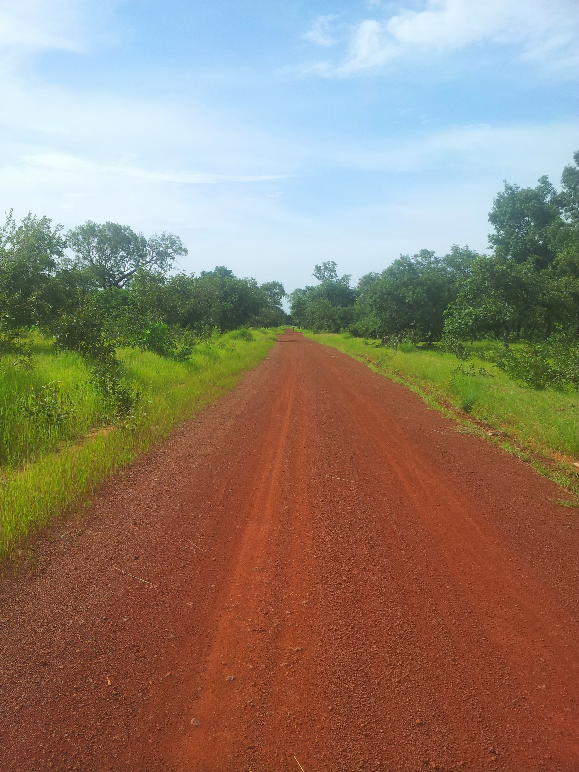 Piste RN9 Kamab en Guinée