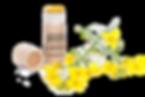 Vegaaninen-huulivoide-ja-rypsinkukka_edi