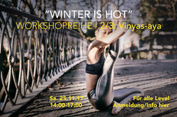 Workshop 2/3: Vinyas-aya