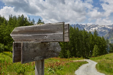 A wooden blank signpost shows the road.