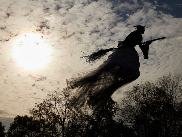 Sway Pole Wicked Witch