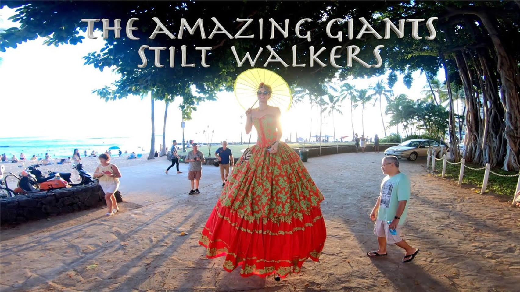 The Amazing Giants Costumes