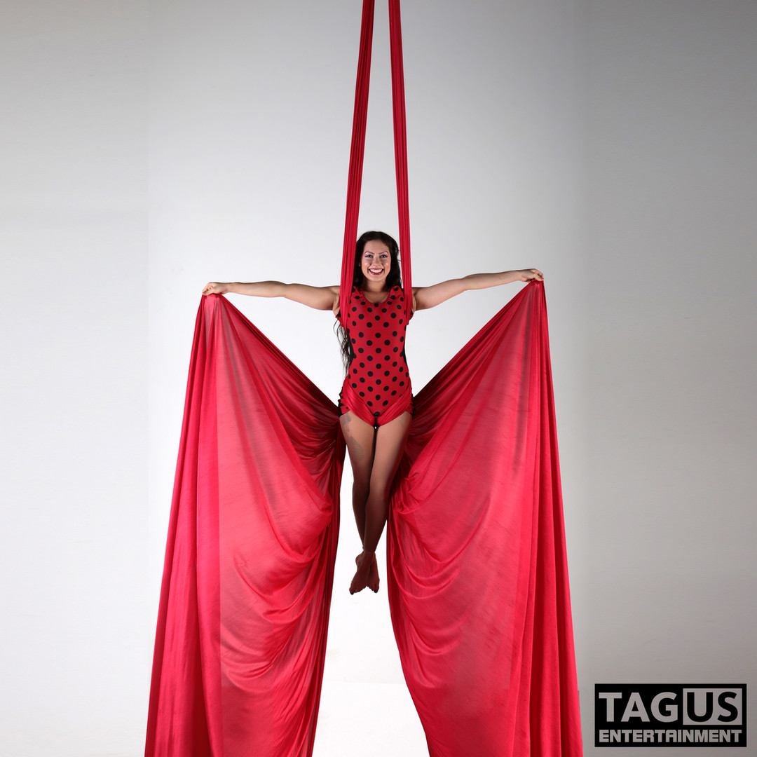 Aerial Silks Performances