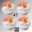 Cupcake 47.png