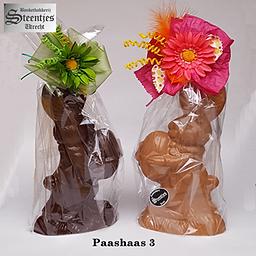Paashaas3.png