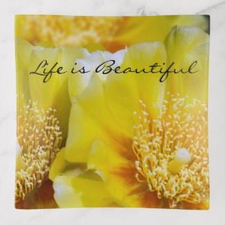 beautiful_prickly_pear_cactus_bloom_trin