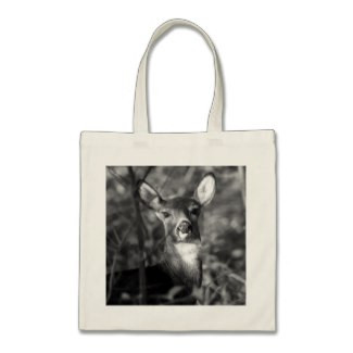 White-Tailed Deer Budget Tote Bag