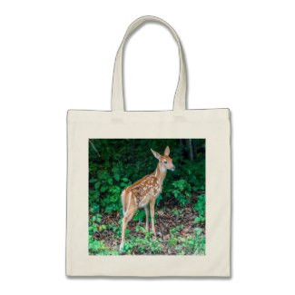 White-Tailed Deer Fawn Budget Tote Bag