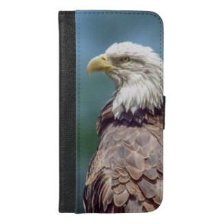 Bald Eagle iPhone 6/6s Plus Case